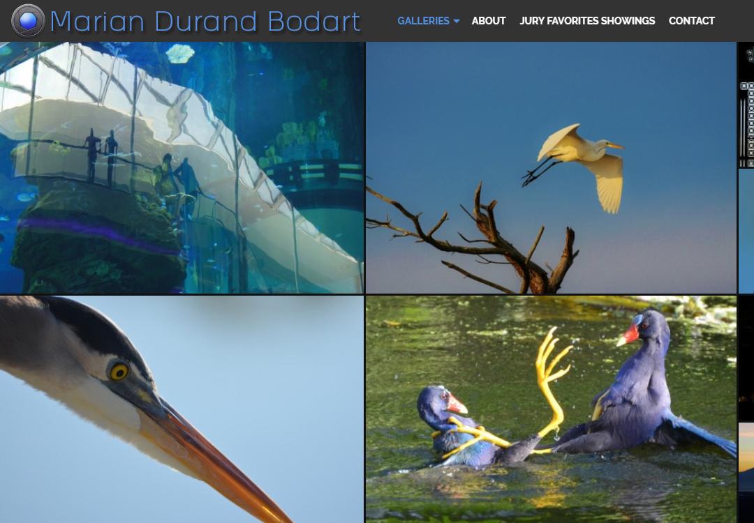 Marian Durand Bodart • Photography