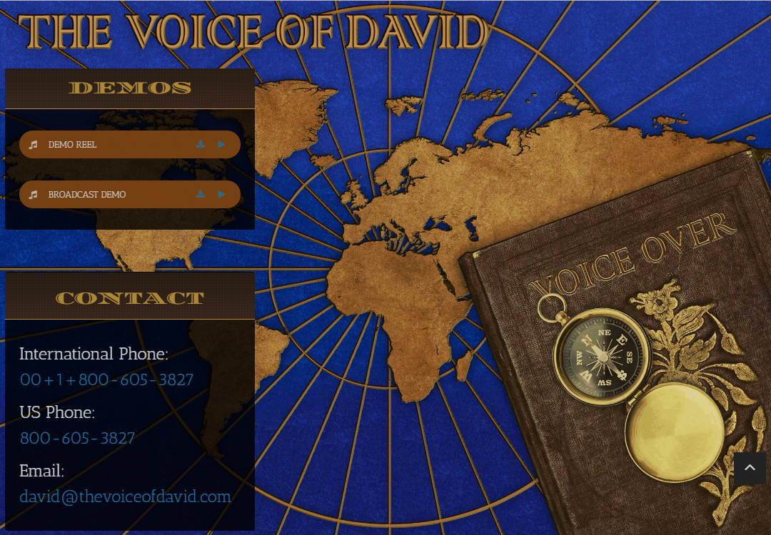 The Voice of David